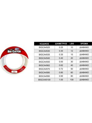 Asso Big Catch Fluorocarbon 100% Διάφανη 45m